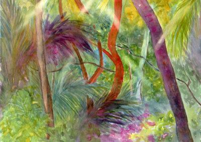 Jungle Light  14x11