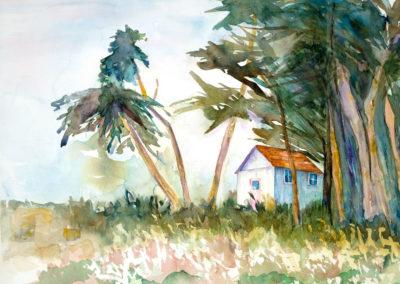 Cabin in Morro Bay  16x12